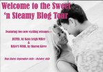 Sweet n Steamy Blog Tour