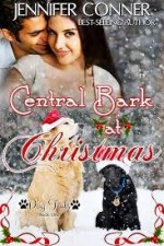 Central Bark at Christmas